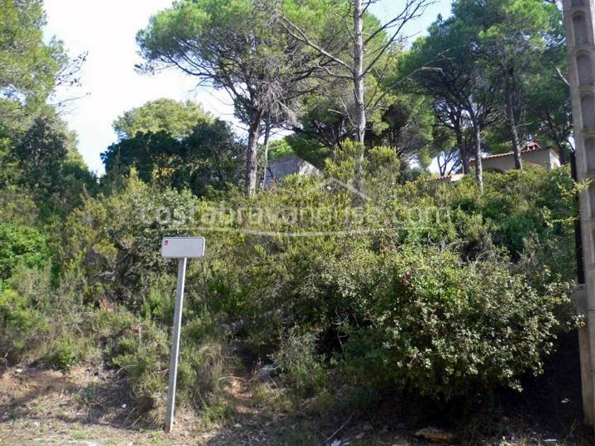 1122-03-1122-plot-near-the-beach-for-sale-in-tamariu-costa-brava-1r.jpg