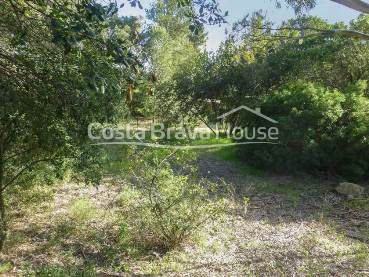 Plot of land almost flat for sale in Tamariu, just 10 min walking from the beach. Possibility to build a house up to 350 m² with pool